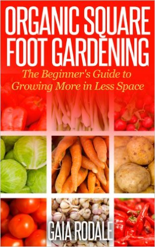 Great info on square foot gardening!